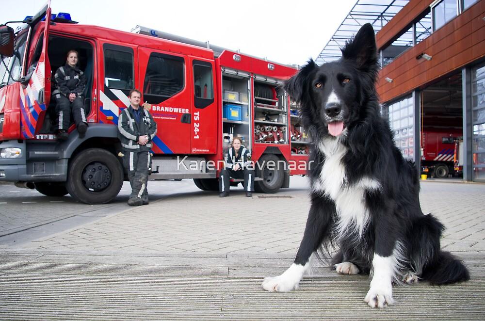 Firefighter Dog by Karen Havenaar