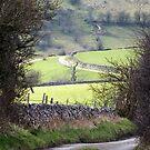 Larkstone Lane by Paul  Green