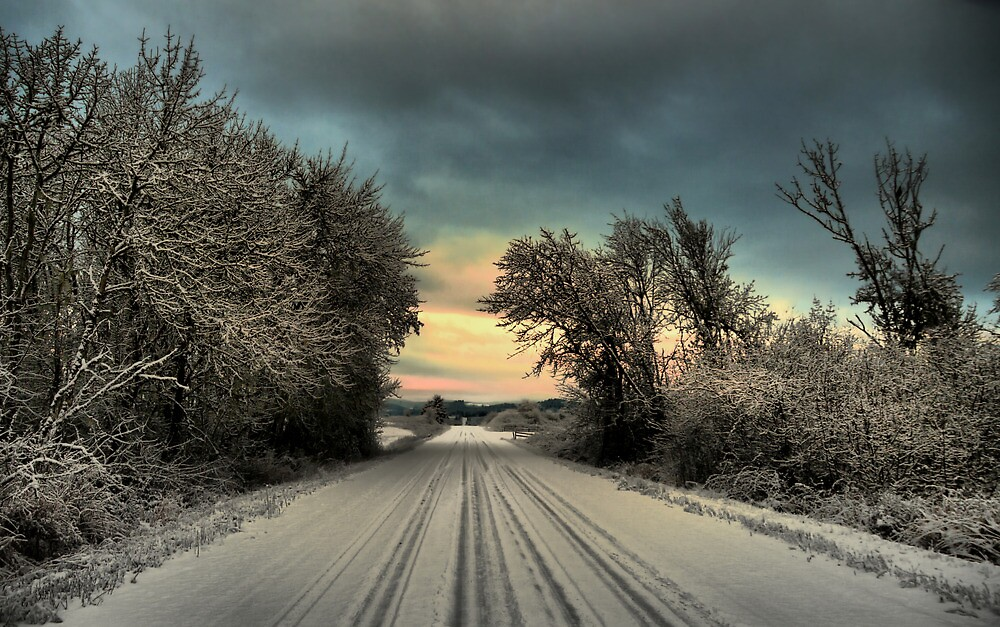 Road ~ Snow ~ Sun by Charles & Patricia   Harkins ~ Picture Oregon
