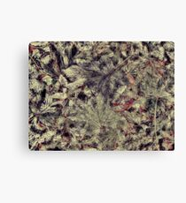 The texture of leaves Canvas Print