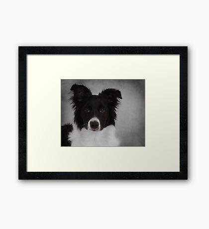 Bogey~ Framed Print