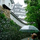Onward to Himeji Castle by Cranemann