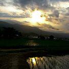 Ginzan Sunset by Cranemann