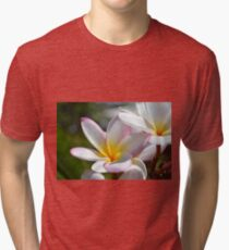 Frangipanis Tri-blend T-Shirt