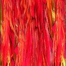 Red feathers by Yvon van der Wijk