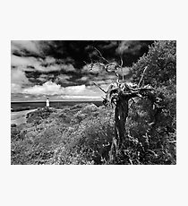 A view above Cape Schank Photographic Print
