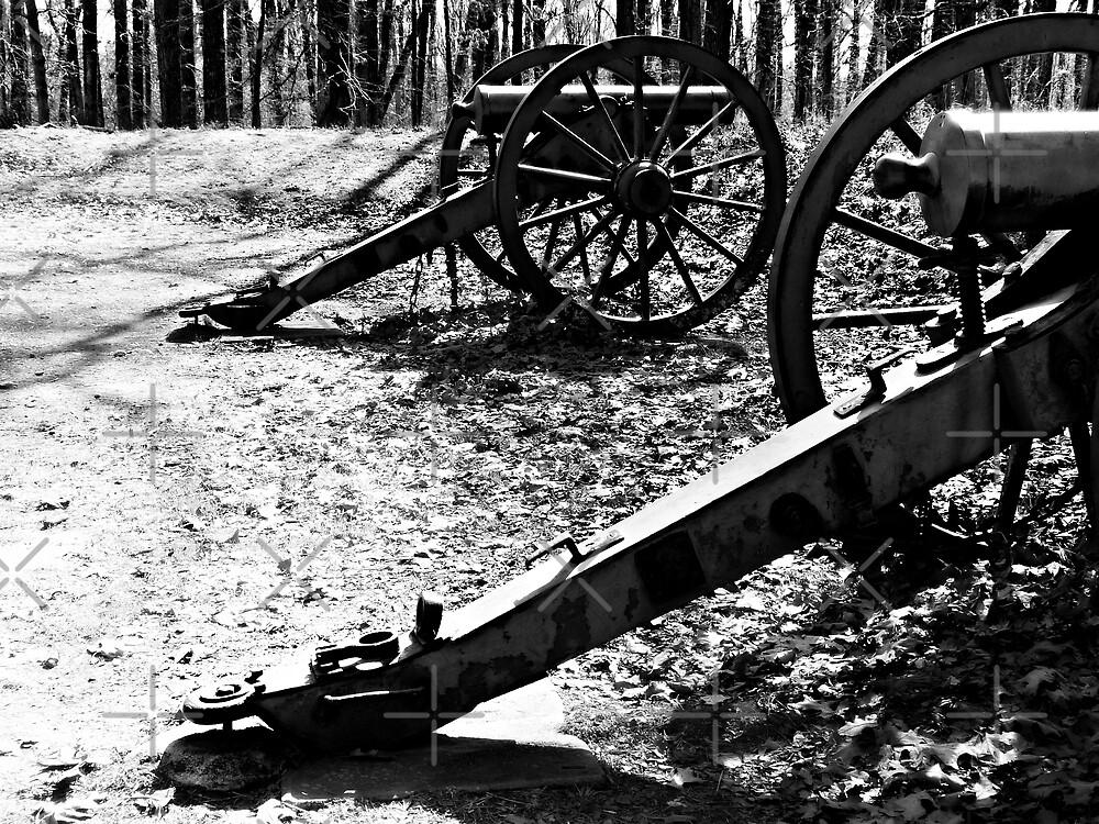 Civil War Cannons, Kennesaw Battlefield, Marietta, Ga. by Scott Mitchell