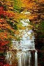 Ganoga Rains by Miles Moody