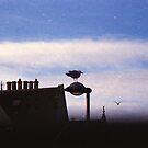 The Birds (2) by Mandy Kerr