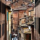 Siena, Italy by Henrietta Hassinen