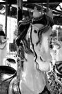 carousel 9 by Jamie McCall