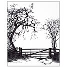 Tree and Gate by Gillian Cross