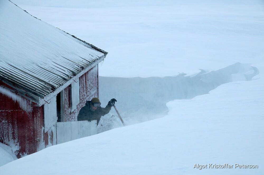 Windy at Hallingskeid - Kreklingbu student cabin by Algot Kristoffer Peterson