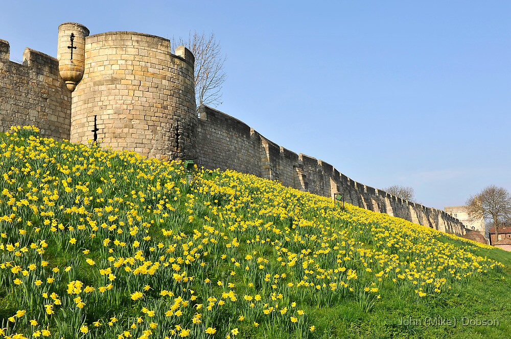 The City Walls by John (Mike)  Dobson