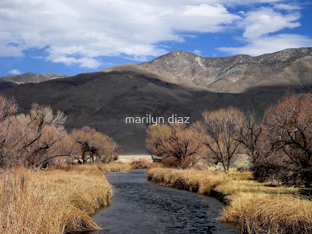 River Water by marilyn diaz