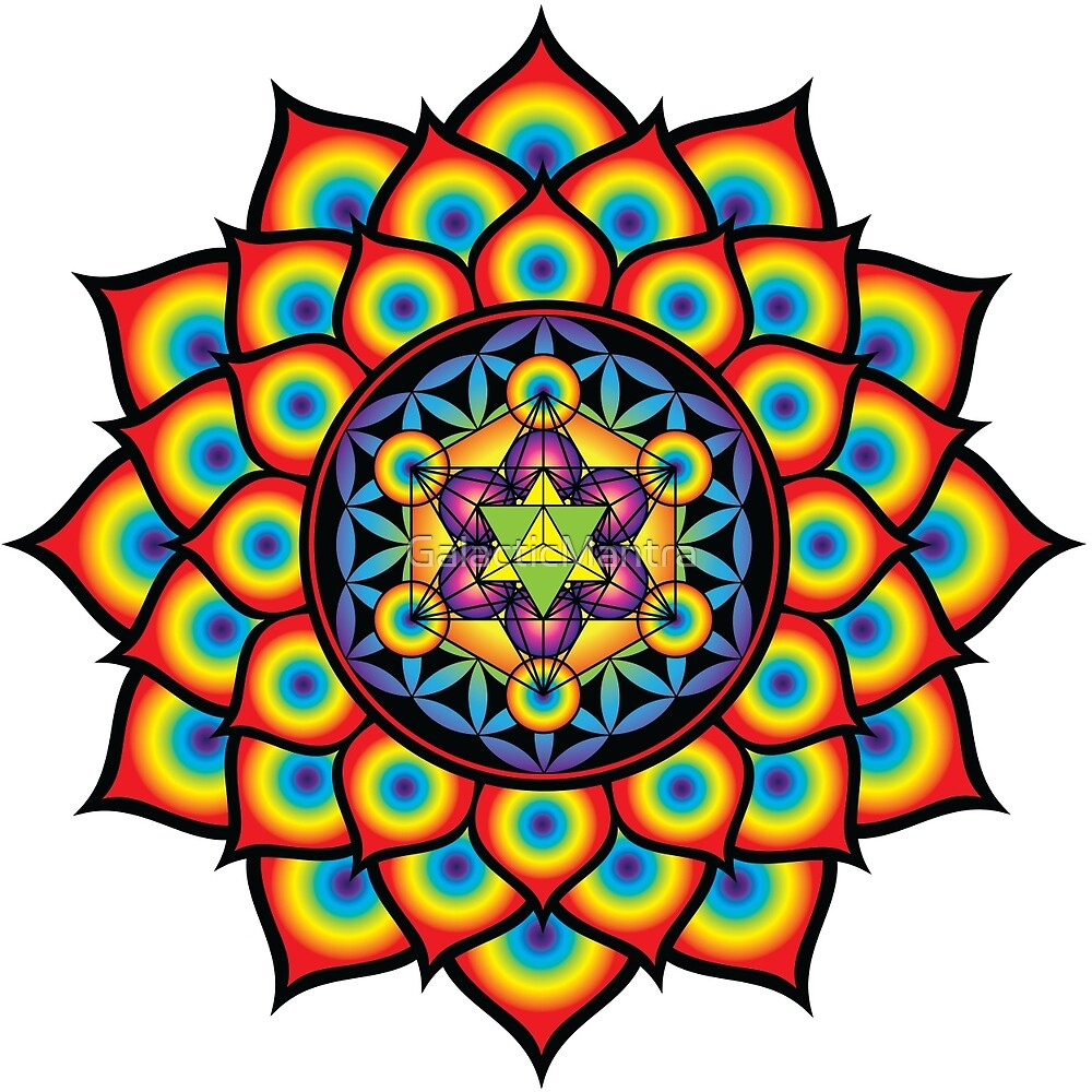 Flower of Life Metatron's Cube by GalacticMantra