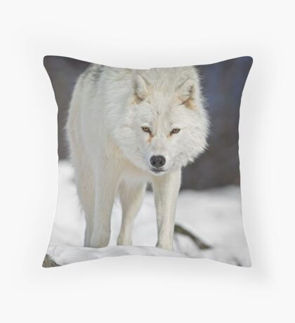 You've got My Attention Throw Pillow