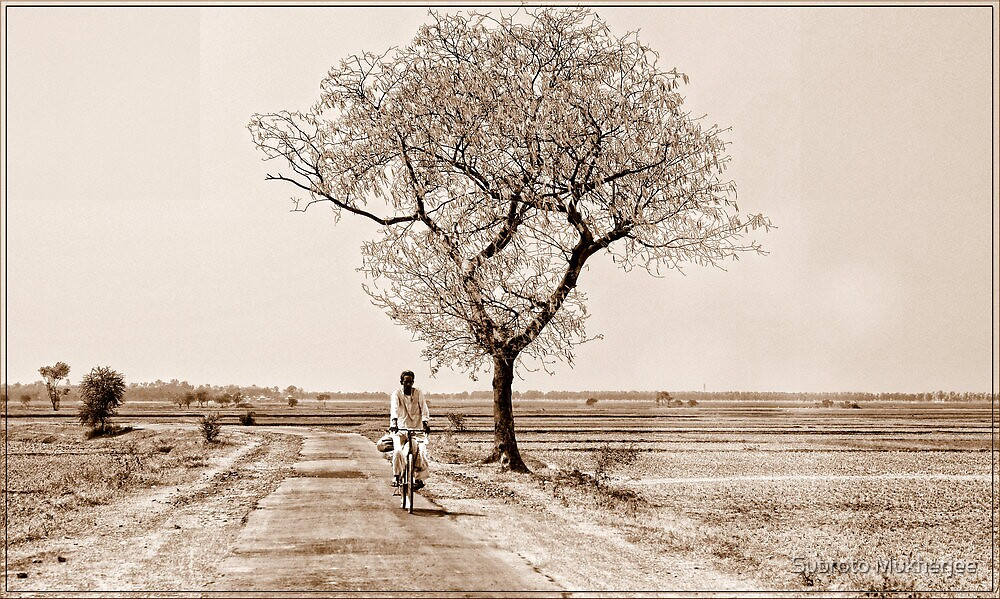 Solitary Cyclist by Subroto Mukherjee
