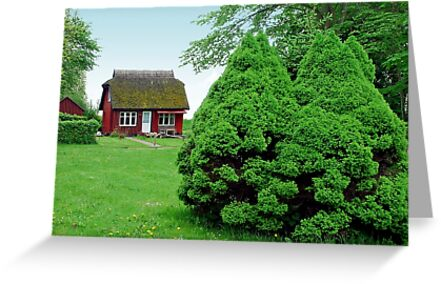 Cottage on the island Hiddensee by Arie Koene