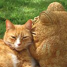 Orange Cat and Fat Frog by Marlin