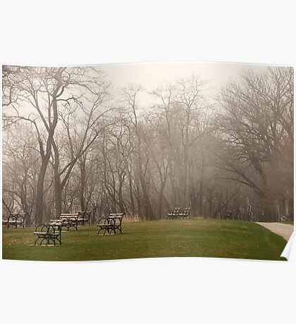 Lake Park Foggy Landscape Poster
