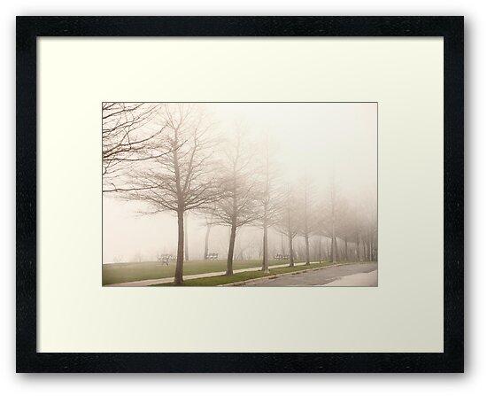 Foggy Sidewalk Scene by Thomas Murphy