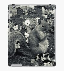A squirrell in a flowerbed iPad Case/Skin