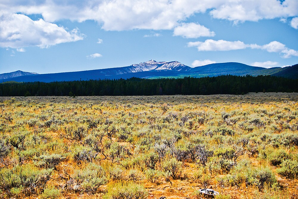 Mountains and Sage 2 by Bryan D. Spellman