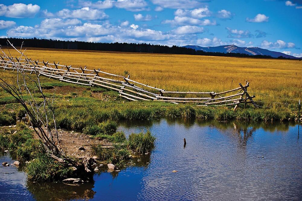 Fence, Pond by Bryan D. Spellman