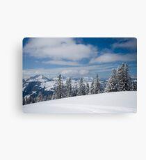 Austrian snow Canvas Print