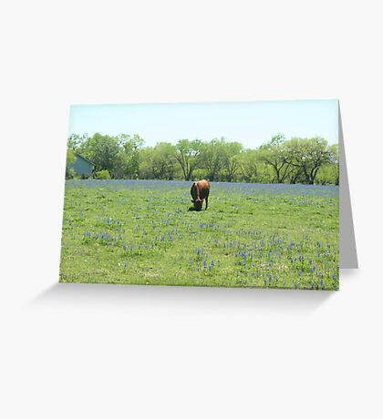 Cow in Spring Greeting Card