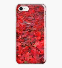 Red, red, red... autumn iPhone Case/Skin