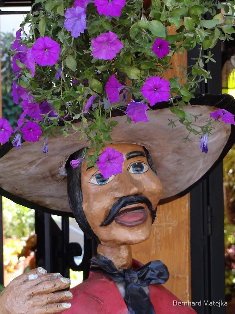 The Strange Cap - El Sombrero Raro by Bernhard Matejka