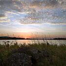 A Chelker Splendor by SteveMG