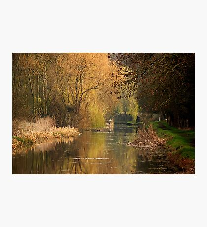 Tranquil days Photographic Print