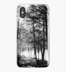 Sunlight through Grainy Trees iPhone Case