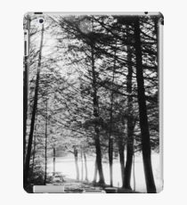 Sunlight through Grainy Trees iPad Case/Skin