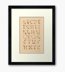 Shoes alphabet! Framed Print