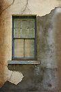 Art of Decay by Vicki Pelham