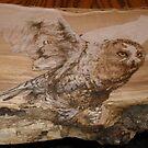 snowy owl anyone? by lynnieB