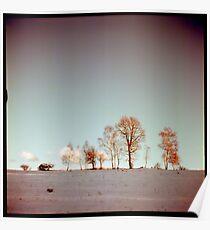 Winter horizont Poster