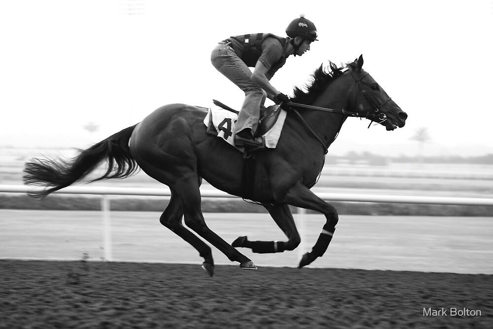 Training - at Dubai Racecourse by Mark Bolton