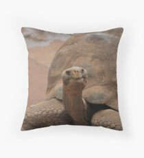 Galapagos Turtle Throw Pillow