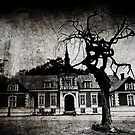 The mansion by Laura Melis