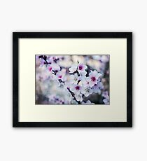 Peach flowers Framed Print