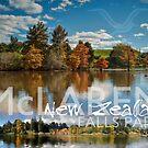 McLaren Falls Park by Ken Wright