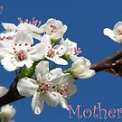 Mother's Day Sky Bouquet by Ron Russell