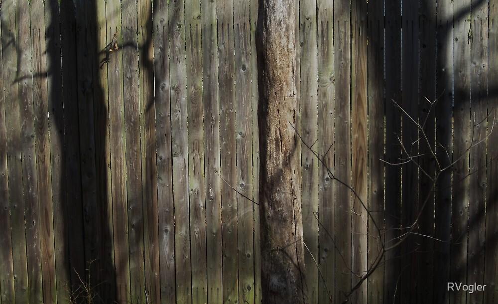 Hidden Nature by RVogler