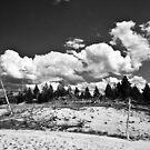Desolation #2 by Matthew Tyrrell