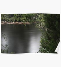 Huon Pine and River Poster